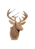 Buck Jr - medium deer trophy brown  Karton  Interieurdecoratie