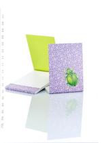 Notaboekje Kever  Karton  Kaartjes enzo