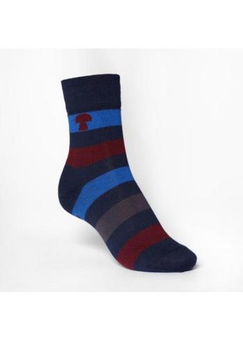kousen/sokken gestreept donker blauw/bordeaux/blauw  Kousen  Kousen/sokken