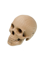 Micro Vince - small human skull - brown  Karton  Interieurdecoratie